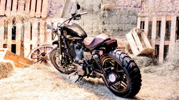 Aba Harley-Davidson 01